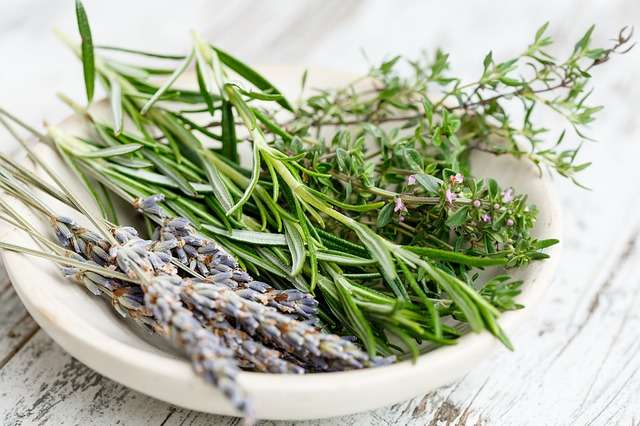 dry herbs in a bowl